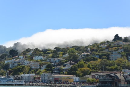fog rolling in.